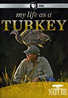 Nature: My Life As a Turkey [DVD] [Import]