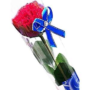 カーネーション [ラ・ベル・フルール] La Belle Fleur 母の日 ブーケ 誕生日 プレゼント フラワー ギフト 贈り物 (赤)