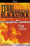 Trial by Fire (Newpointe 911)