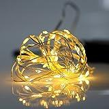イルミネーション LED ライト ワイヤーライト 電飾 電池 式 クリスマス ツリー 飾り MANATSULIFE(2M(20LED), ウォームホワイト)の写真