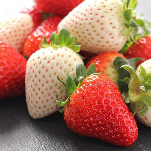 奈良県産 古都華 & パールホワイト 紅白 2色の苺セット