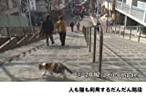 谷中のら猫ラプソディー〜だんだん猫10年の記録〜 [DVD] 画像