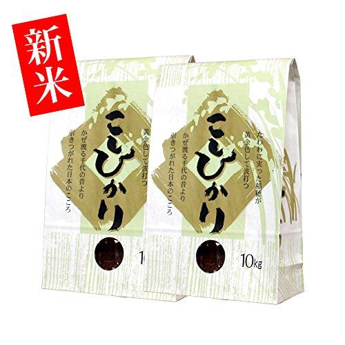 お見舞いのお返しに【新米・玄米】新潟米コシヒカリ 20kg(10kg×2袋) [新潟産こしひかり]