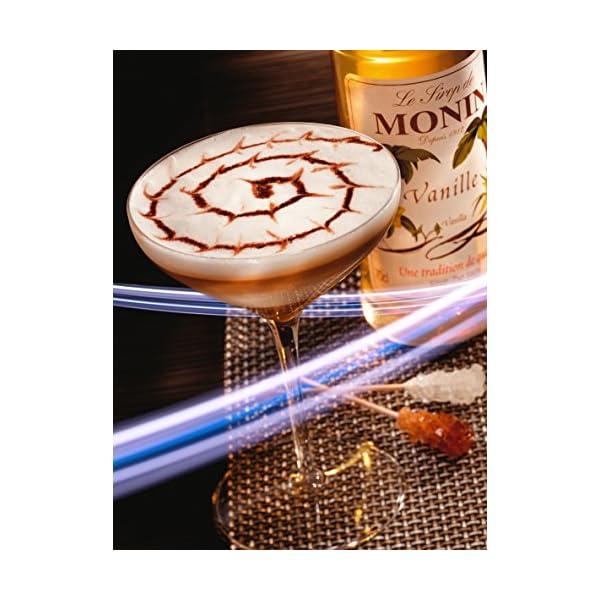 MONIN(モナン) バニラシロップ 250mlの紹介画像4