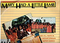 Mary Had a Little Lamb [12 inch Analog]