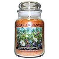 A Cheerful Giver Country Wildflowers Jar Candles 24 oz [並行輸入品]