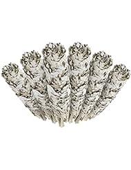 6 Pack - Premium California White Sage Smudge Sticks, Each Stick Approximately 10cm Long - Incense Garden Brand...