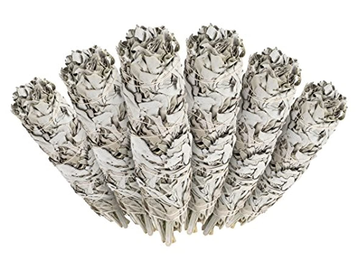 ひも女の子前置詞6 Pack - Premium California White Sage Smudge Sticks, Each Stick Approximately 10cm Long - Incense Garden Brand...
