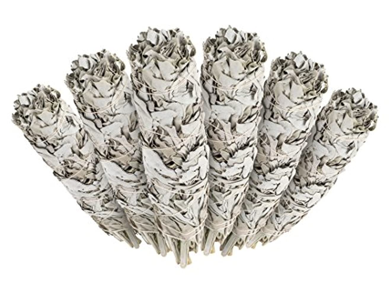 ピケ種海6 Pack - Premium California White Sage Smudge Sticks, Each Stick Approximately 10cm Long - Incense Garden Brand...