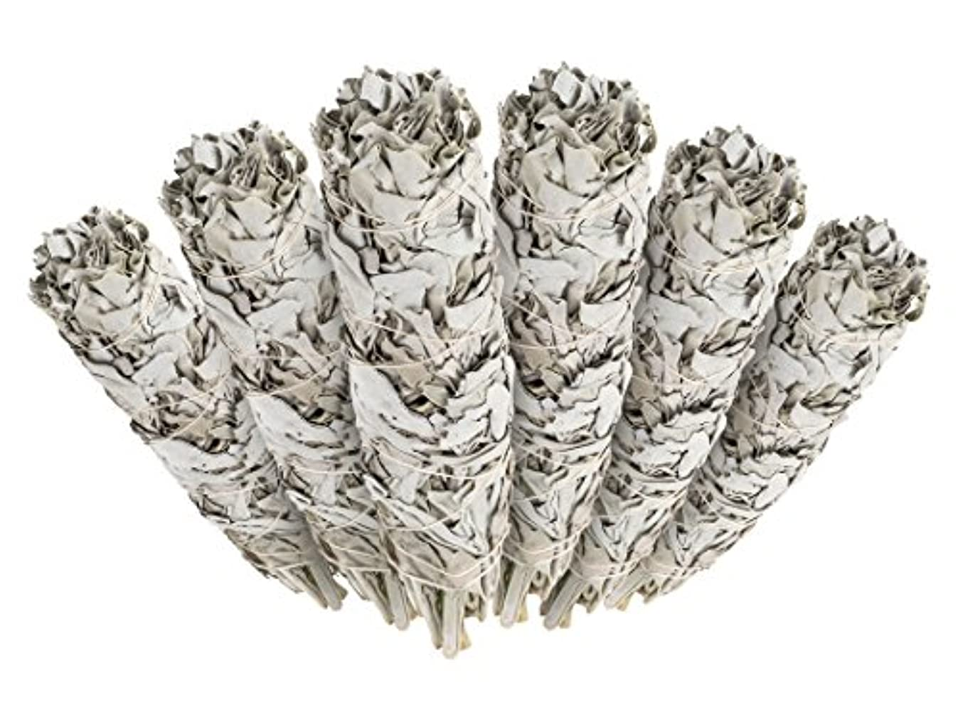 木製雄弁な健康的6 Pack - Premium California White Sage Smudge Sticks, Each Stick Approximately 10cm Long - Incense Garden Brand...