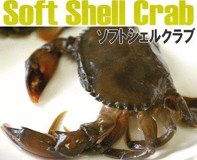 【ソフトシェルクラブ:1kg Mサイズ】マングローブで育った天然の蟹!高級食材!脱皮したての蟹!SoftShellCrab! -