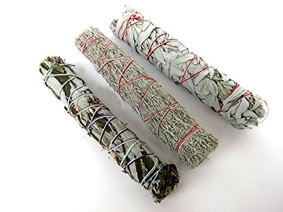 卒業平衡参照するセージSmudge Sticks Bundle of 3 SticksサンプラーセットLarge 8 – 9インチ