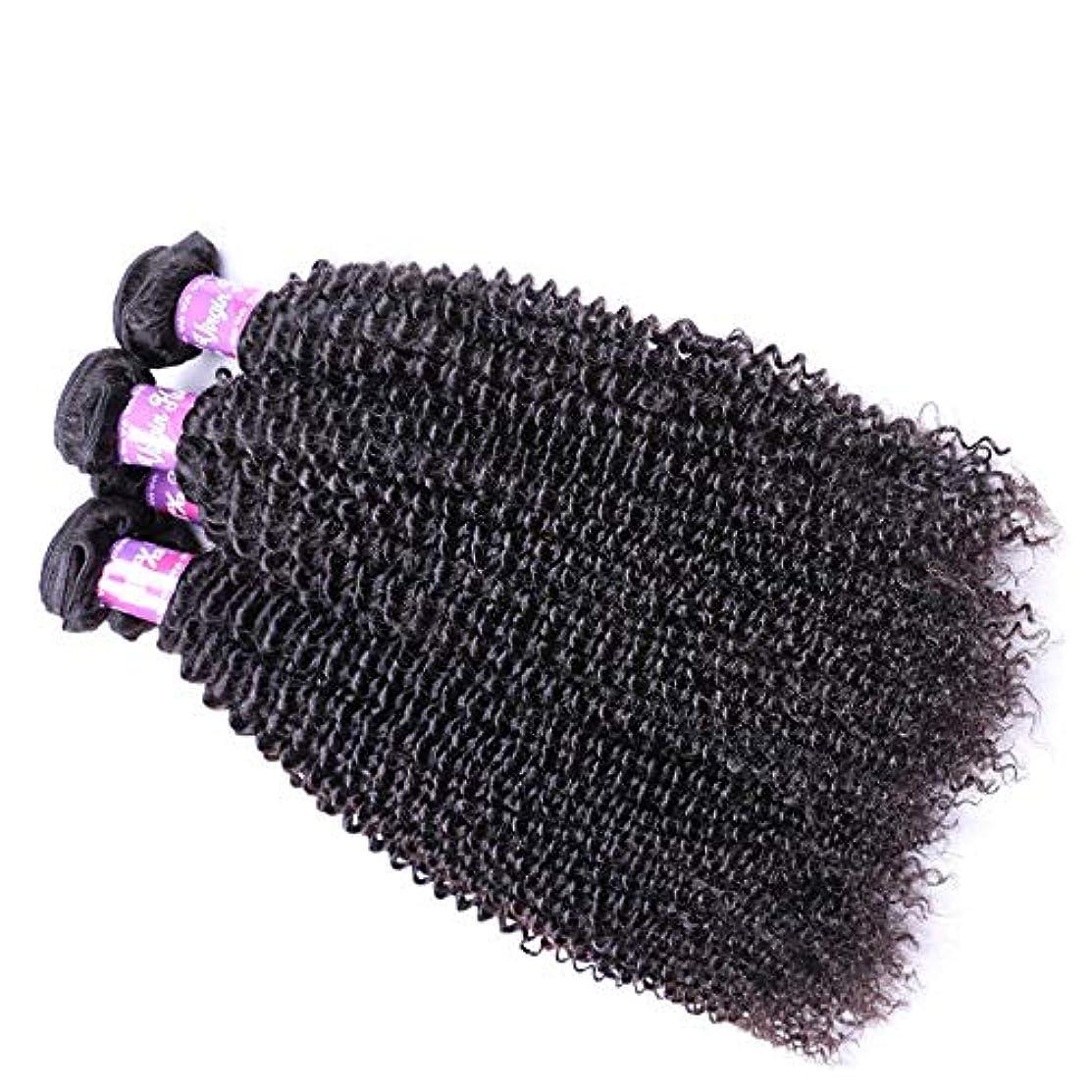 畝間困惑した艦隊SRY-Wigファッション ヨーロッパとアメリカの黒人女性のための長い巻き毛の波状の黒い色の高温合成ウィッグ130%密度のかつら (Color : ブラック, Size : 16inch)