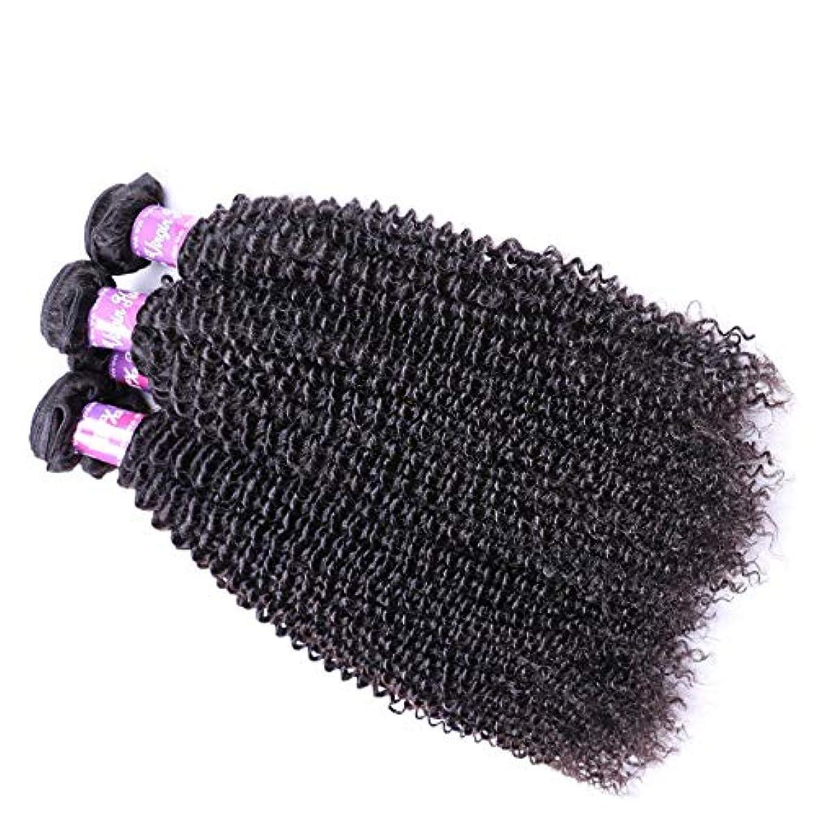 ハチ借りているトランジスタSRY-Wigファッション ヨーロッパとアメリカの黒人女性のための長い巻き毛の波状の黒い色の高温合成ウィッグ130%密度のかつら (Color : ブラック, Size : 16inch)