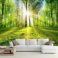 Ljjlm 写真の壁紙3D森の日差し自然風景壁画リビングルームベッドルームテレビソファ背景壁カバー3D-160X120CM
