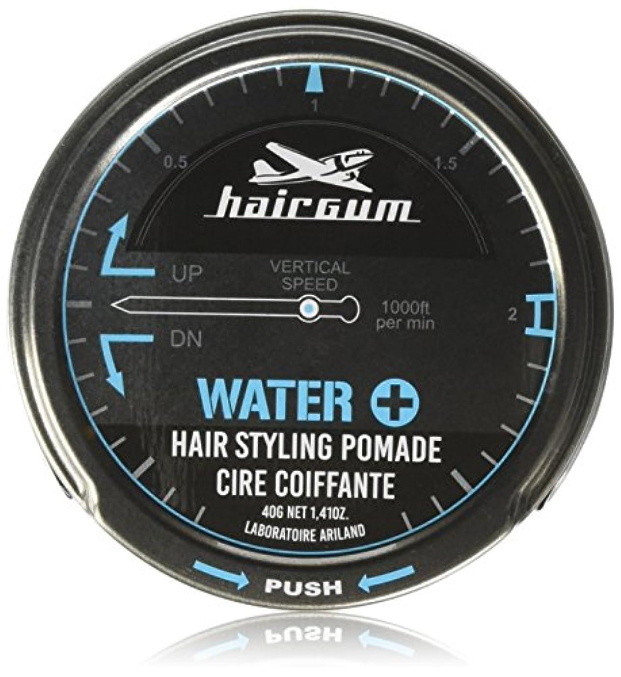 インストールユニークな箱hairgum(ヘアガム) Water+ Pomade 40g ヘアガム ウォータープラス 水性 ポマード