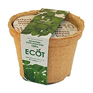 エコットS バジルの関連商品2