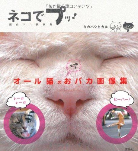 ネコでプッ! 面白ネコ画像集の詳細を見る
