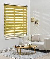 サイズ オーダーメイド, [Winsharp Basic, mustard, W 180 x H 120 (CM)] 調光ロールアップ スクリーン 窓 プリーツ ブラインド & カーテン 簾