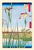 Buy Enlarge 0-587-02718-5P12x18 Iris Garden at Horikiri- Paper Size P12x18