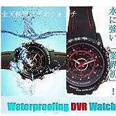 【小型カメラ】防水ダイバー型デジタル腕時計 大容量8GB内蔵【2010年版】水中撮影可