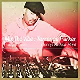 Mix the Vibe: Terrence Parker - Deeep Detroit Heat