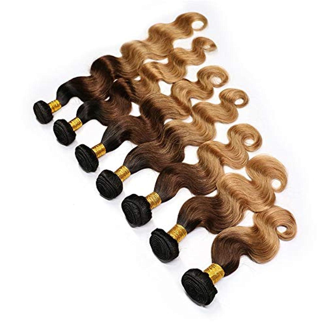 下にポケットファックスYESONEEP 実体波ブラジルのオンブル髪織り - T1B / 4/27黒と茶色の3つのトーンの色の髪の拡張子合成髪のレースのかつらロールプレイングかつら (色 : ブラウン, サイズ : 16 inch)