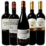 チリ ワンランク上の人気チリワイン ソムリエ厳選ワインセット 飲み比べ 赤ワイン5本 750ml 5本