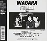 NIAGARA TRIANGLE Vol.2 20th Anniversary Edition 画像