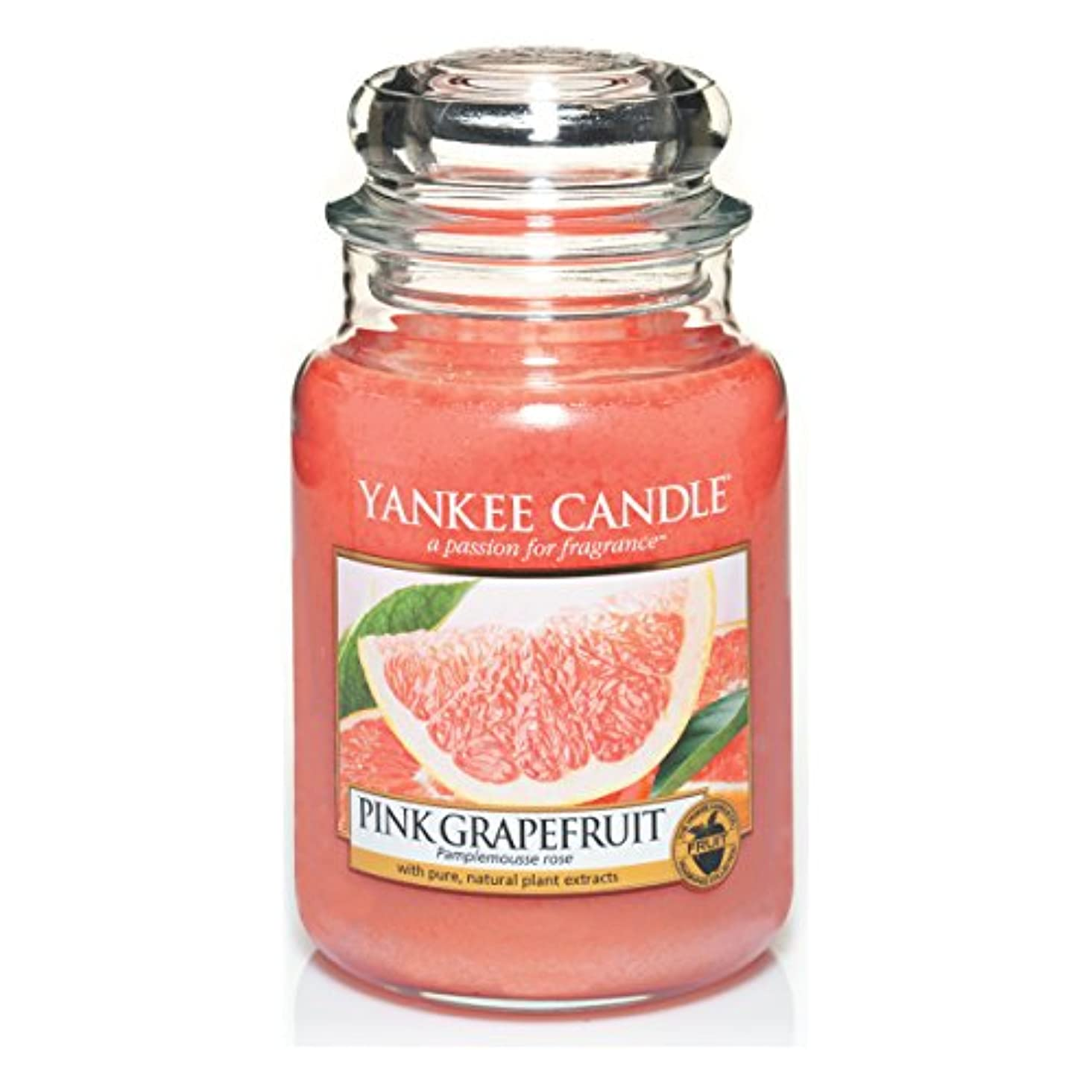 子供っぽいプロトタイプかなりYankee Candle Large Jar Candle, Pink Grapefruit by Yankee Candle