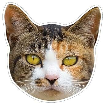 kmag 猫の顔マグネット 三毛ねこ その2