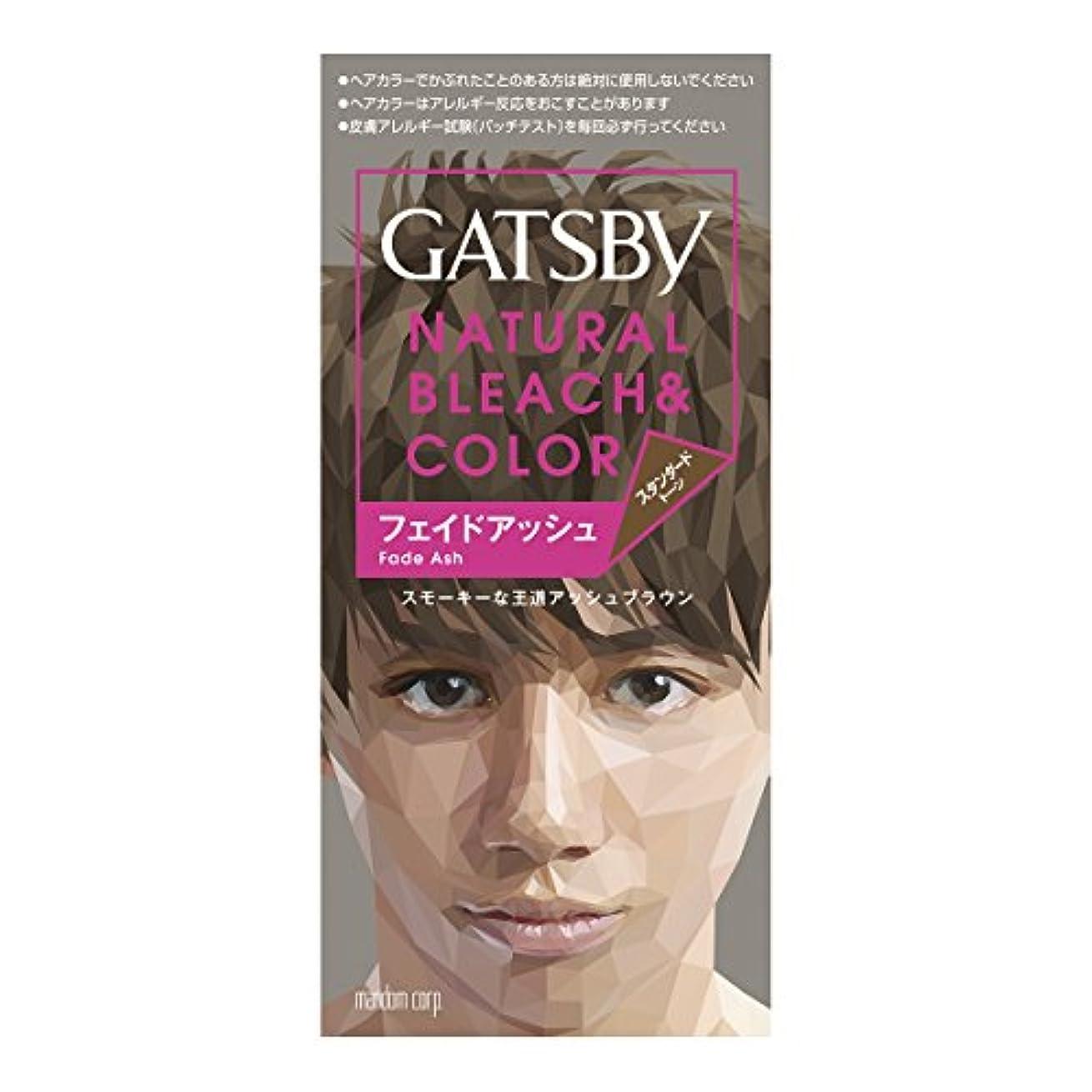 チップ知覚する羽ギャツビー ナチュラルブリーチカラー フェイドアッシュ 1組【HTRC5.1】