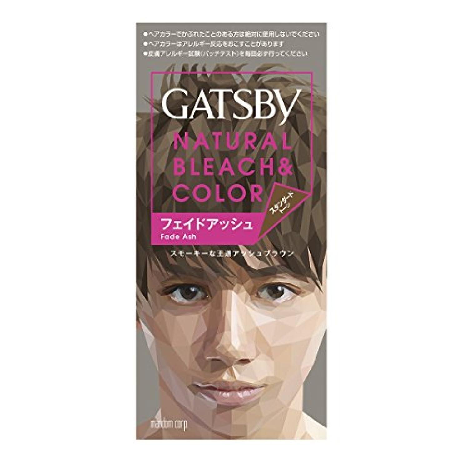 傾向神経橋脚ギャツビー ナチュラルブリーチカラー フェイドアッシュ 1組【HTRC5.1】