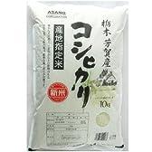 産地指定米 栃木芳賀産 コシヒカリ 10kg