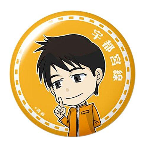 青春鉄道 06 宇都宮線 ドームマグネットの詳細を見る