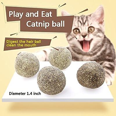 Fanxieast Cat Catnip Toys,Cat Catnip Natural Matatabi (Silvervine) Chew Sticks Teeth Grinding Chew Toys for Cat Kitten Kitty