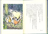 森のすみか―モモンガ クルルの物語 (福音館創作童話シリーズ) 画像