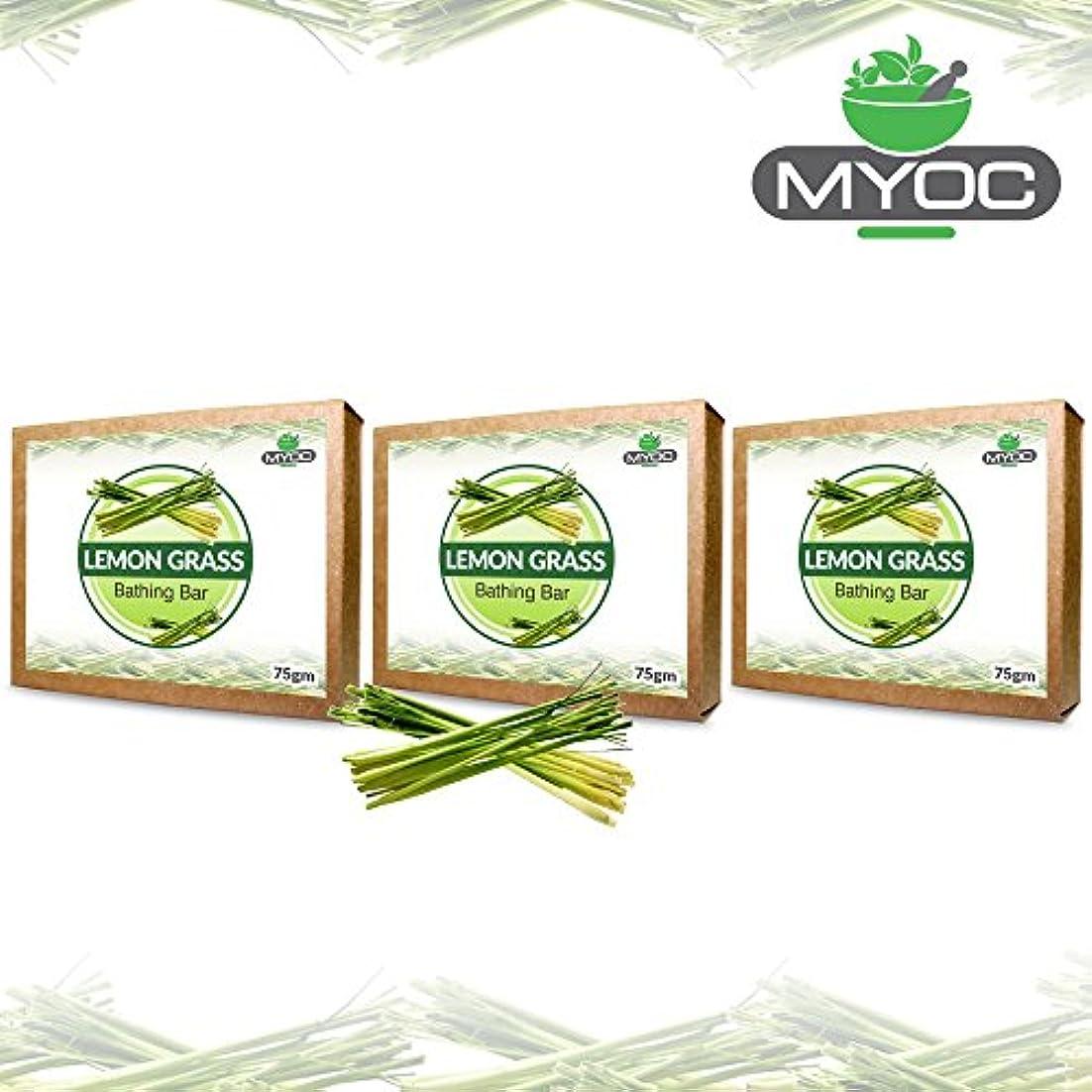 植物学ポスト印象派名前を作るLemon Grass Oil And Vitamin E Soap for acne, bad odour, wrinkles and good hair 75g x 3 Pack