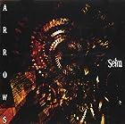 ARROWS(DVD付)()