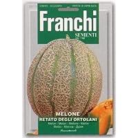 【FRANCHI社種子】【91/3】イタリアンメロン RETATO DEGLI ORTOLANI