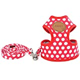 QUBO 小型犬用 かわいい 水玉 ドット柄 胴輪 ハーネス&リード セット (5.レッド M)