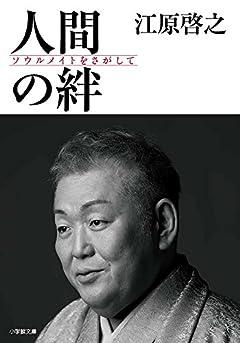 人間の絆: ソウルメイトをさがして (小学館文庫 え 9-1)