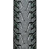 パナレーサー(Panaracer) タイヤ パセラ ブラックス [W/O 650×28C] ブラック 8W628-18-B