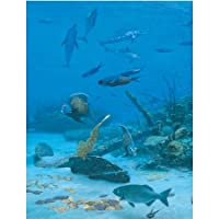 Randall Scott Pieces of Eight Jigsaw Puzzle 500pc