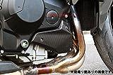SSK エンジンサイドカバー 左右セット ドライカーボン 綾織り艶あり NINJA H2 2015- CKA0702TG