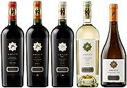世界で高評価&メダル受賞のワイナリーの受賞ワインが入ったボリュームある濃密チリワイン5本セット(赤750mlx3本、白750mlx2本)[チリ/Amazon.co.jp限定/Winery Dir