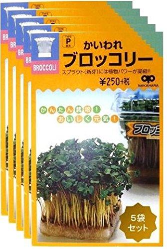 ブロッコリースプラウト種/5袋セット