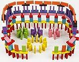 カラー ドミノ 12色 ハラハラ ドキドキ 感動 涙 みんなで 楽しく 遊ぼう 木製 カラフル (120個セット)