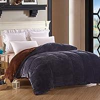 暖かい柔らかい秋と冬のキルトのカバー両面のフランネルファブリックの掛け布団カバー快適な暖かいファッションソリッドカラーの掛け布団カバーの羽毛布団のカバー (Color : A, サイズ : 150*200cm)