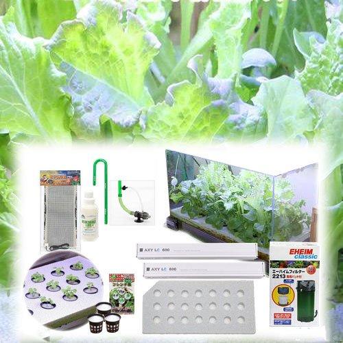 60センチ水槽用 水耕栽培キット 水耕栽培 野菜 家庭菜園